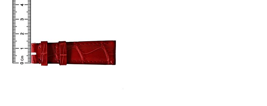 ai-02_strap-mesure-width-b